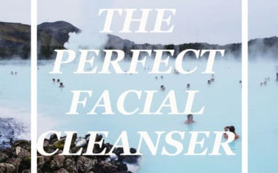 THE PERFECT FACIAL CLEANSER