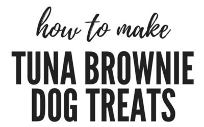 HOW TO MAKE TUNA BROWNIES FOR DOGS