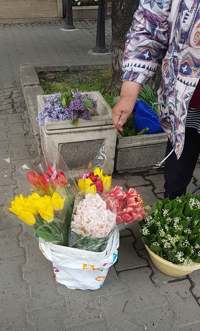 FLOWERS ALONG SOFIA STREETS