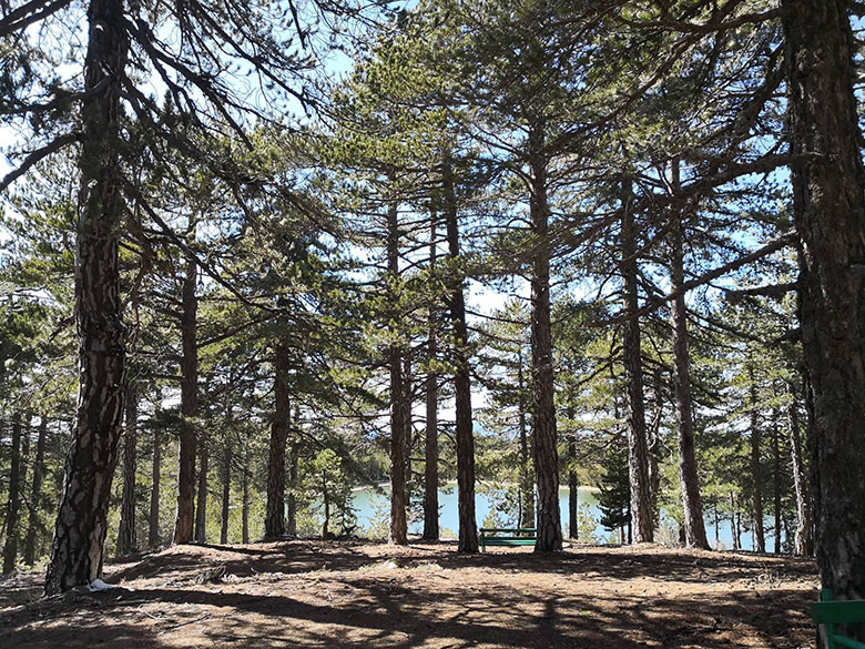 Troodos Mountails and a gorgeous dam - picnic area