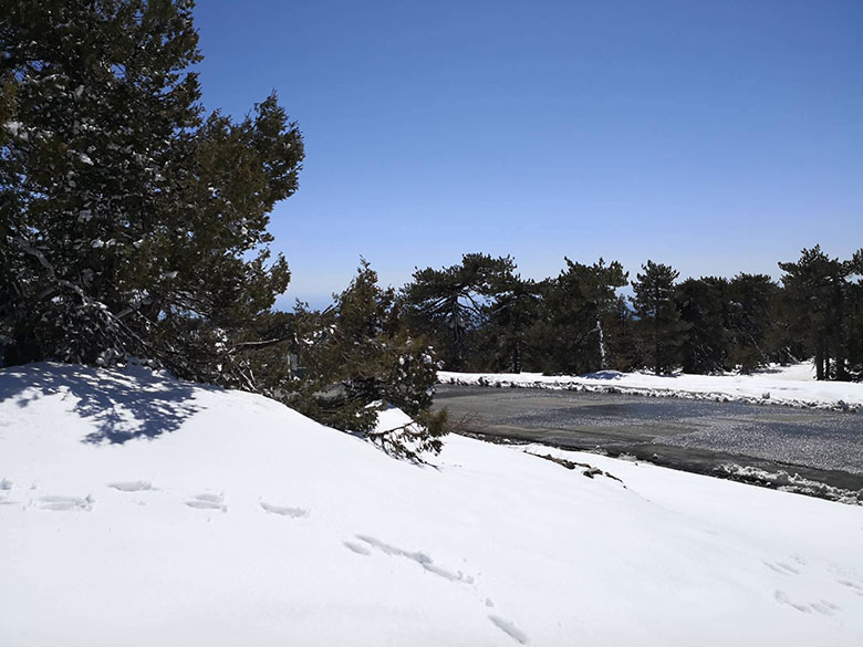 Troodos mountain with snow